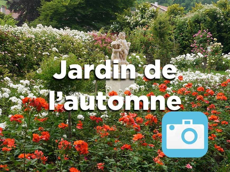 jardin-automne