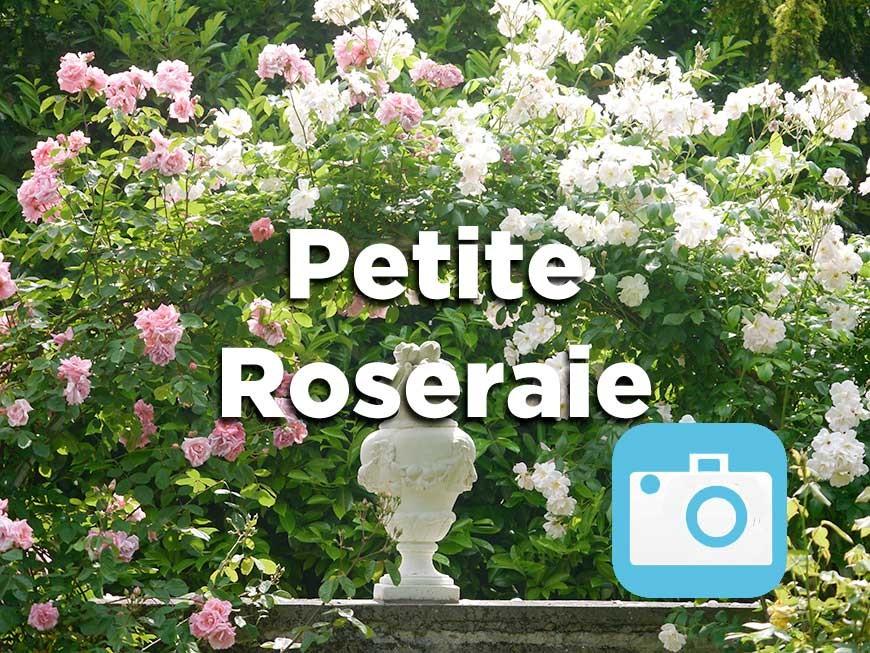 petite-roseraie